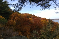 Fall Colors Along the Illinois River Road National Scenic Byway