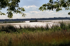 Nature Preserve on the IL River Road National Scenic Byway
