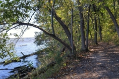 River Trail at Starved Rock State Park