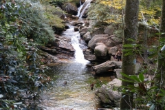 Chasing Waterfalls in Pisgah National Forest, NC
